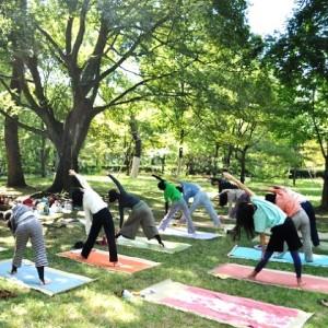 ananda yoga1