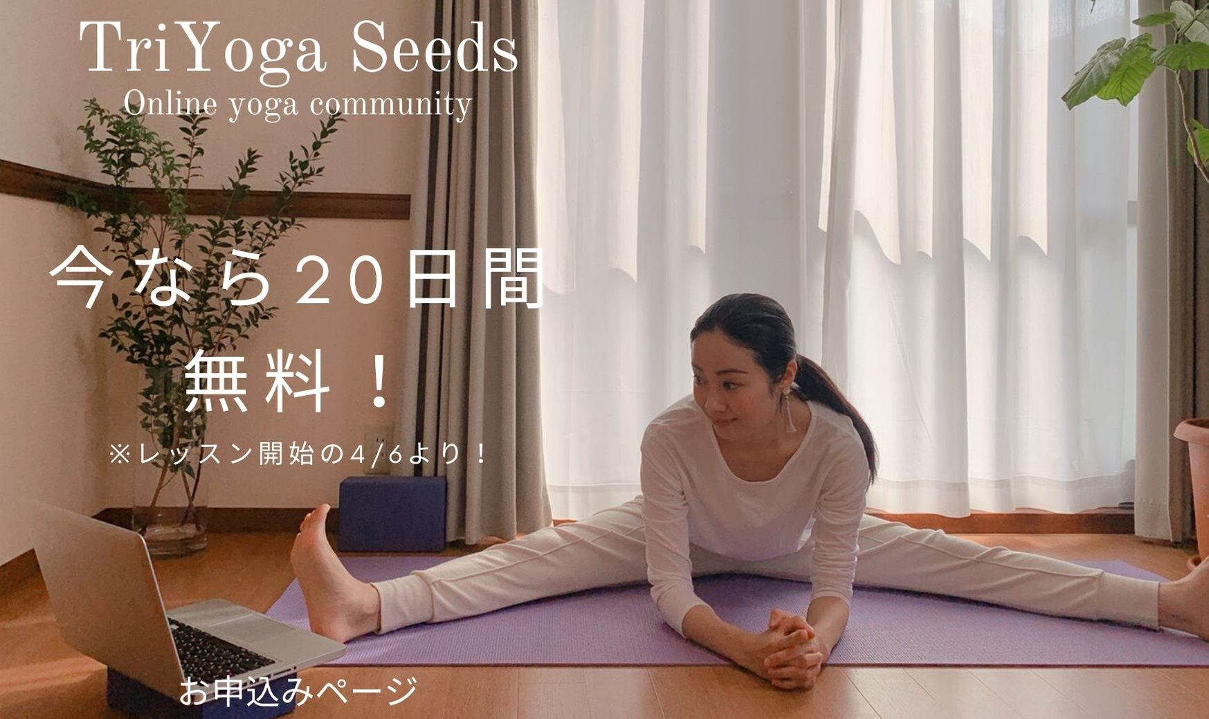 TriYoga Seeds